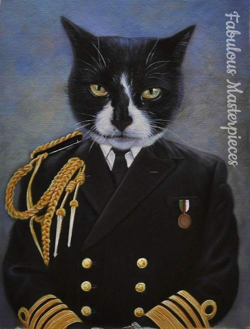 cat in uniform